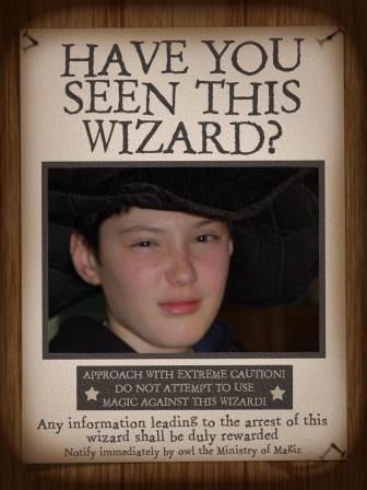 HarryPotter_Have_you_seen_this_wizard__02.jpg