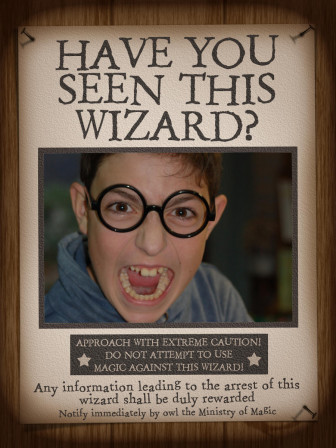 HarryPotter_Have_you_seen_this_wizard__03.jpg