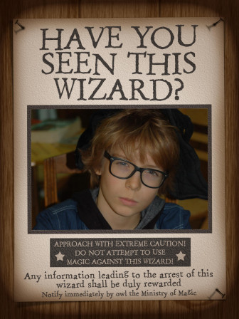HarryPotter_Have_you_seen_this_wizard__09.jpg